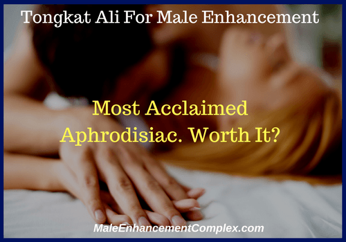 Tongkat Ali | Male Enhancement Ingredient