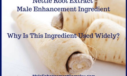 Nettle Root Extract   Male Enhancement Ingredient