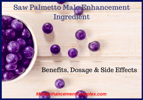 Saw Palmetto Male Enhancement Ingredient -MaleEnhancementComplex.com
