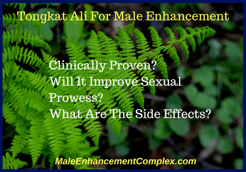 Tongkat Ali For Male Enhancement-MaleEnhancementComplex.com
